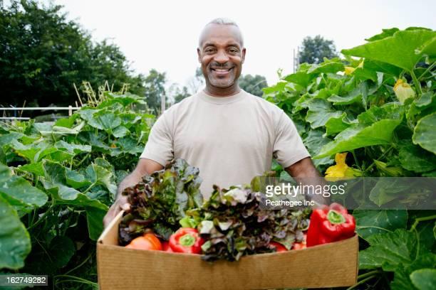 Black man gathering vegetables in community garden