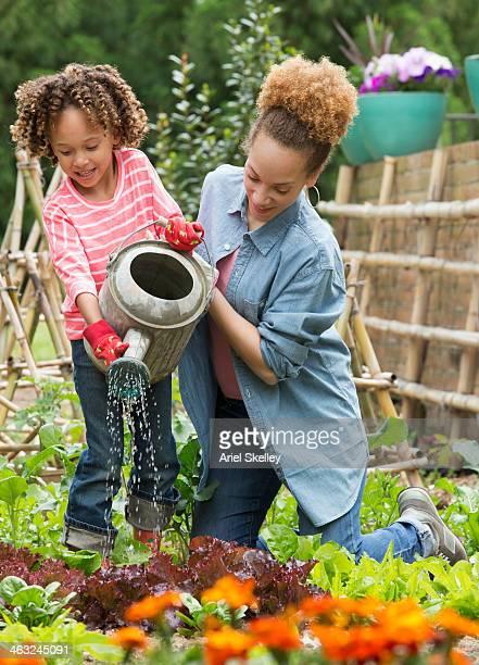 black mother and daughter gardening together - cheveux naturels photos et images de collection