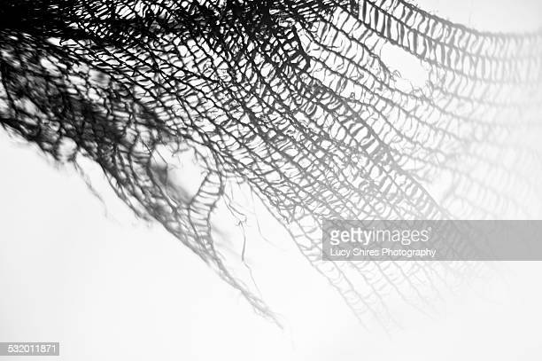 black netting blowing in the wind. - lucy shires stock pictures, royalty-free photos & images