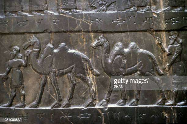 Black Obelisk of Shalmaneser III Limestone Assyrian sculpture Basrelief 858824 BC Nimrud Iraq The tribute of Jehu son of Omri British Museum London...