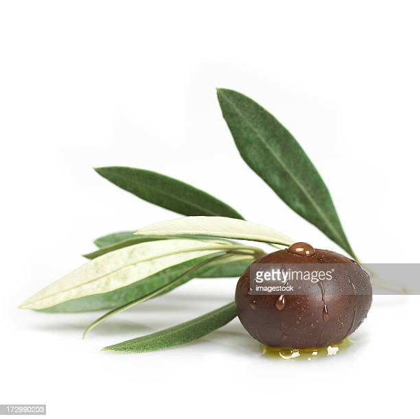 Black olive with leaves