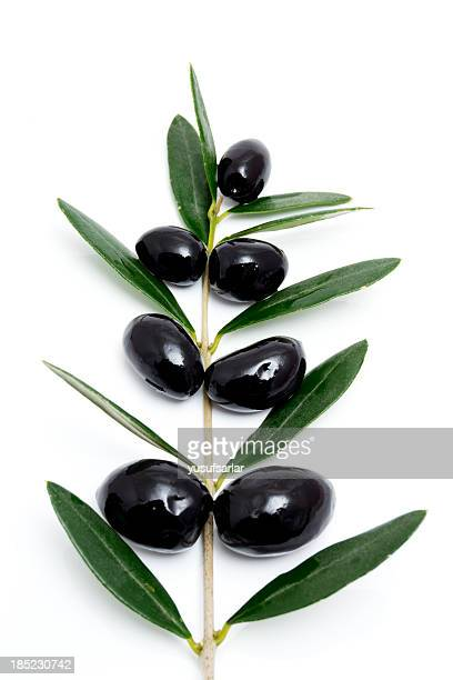 black olives with branch and leaves tree shape - kalamata olive stock photos and pictures
