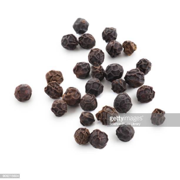 black peppercorn - pimienta fotografías e imágenes de stock