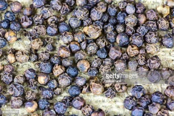Black peppercorns, close-up