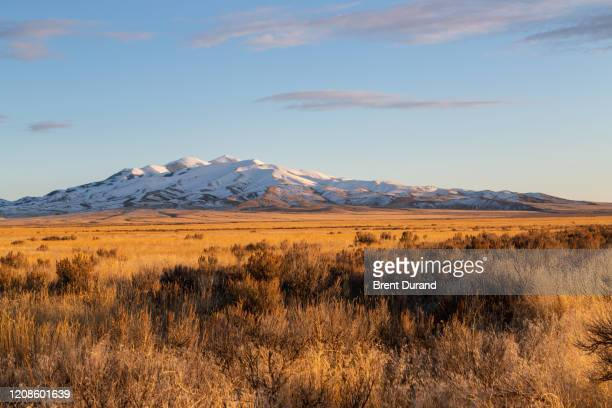 black pine mountains idaho - golden hour stock pictures, royalty-free photos & images