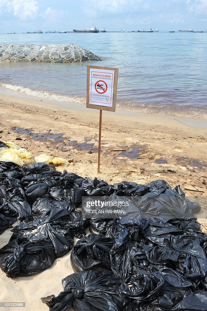 Black plastic bags filled with sand spoiled with crude oil slick lie along the East Coast in Singapore on May 28, 2010, after crude spilled from a tanker damaged in a collision in the Singapore Strait. Singapore's most popular beach stretch remained shut to the public on the first day of the summer school holidays as emergency crews pressed on with their cleanup of an oil slick.
