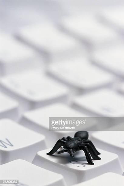 Black plastic bug on computer keyboard, computer bug concept