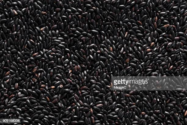 black rice grains - black rice stock pictures, royalty-free photos & images