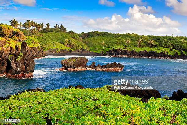 black sand beach in hawaii - media_in_honolulu,_hawaii stock pictures, royalty-free photos & images