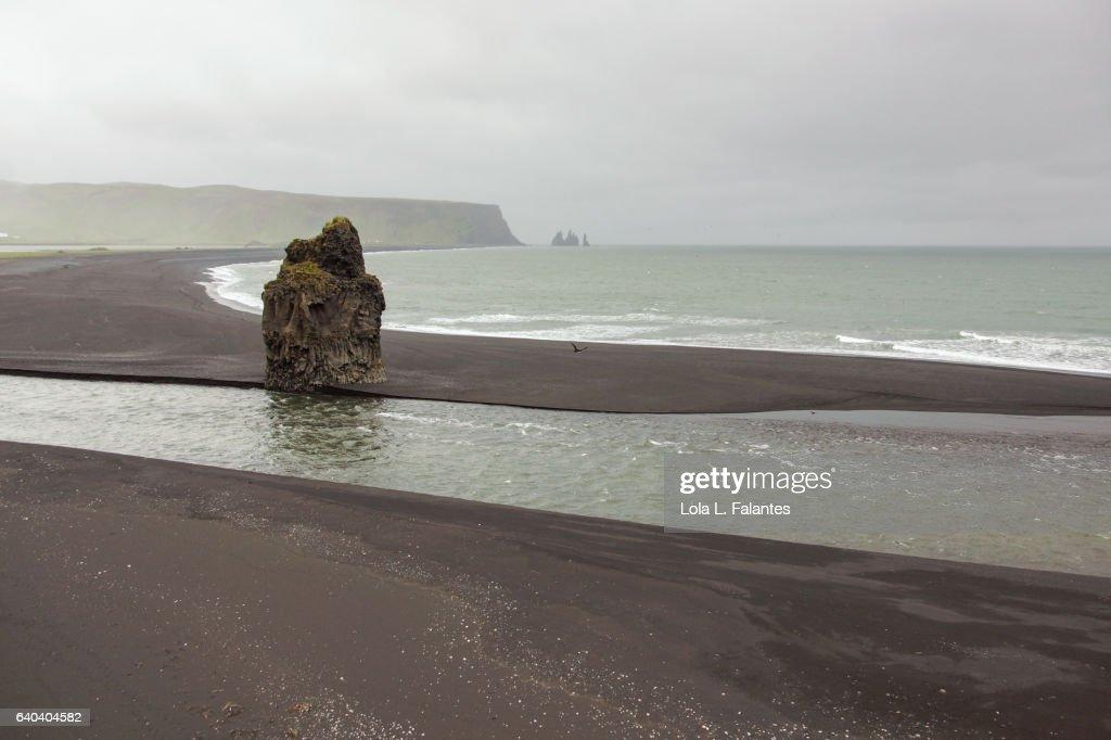 Black sand beach : Foto de stock