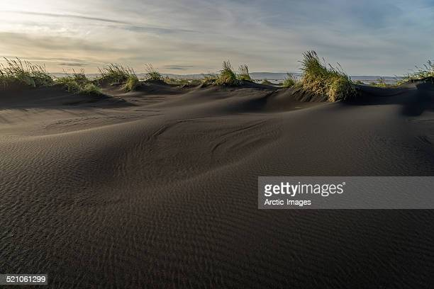 Black sands and grass.