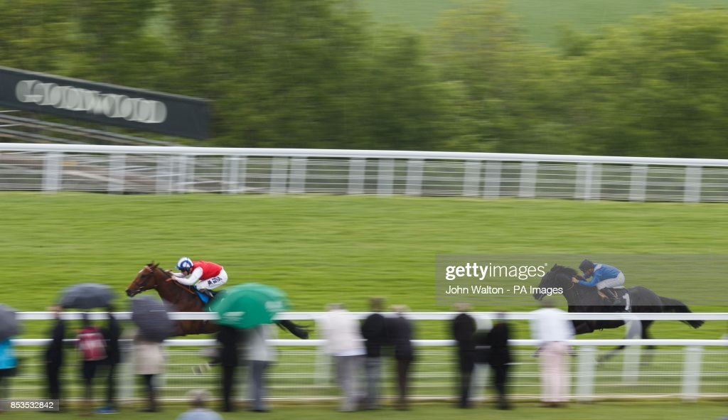 horse racing may festival 2014 day one goodwood racecourse rh gettyimages com houses to win in uk homes to win uk