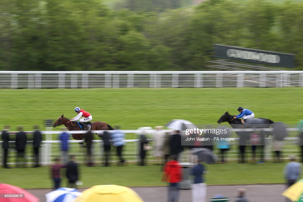 horse racing may festival 2014 day one goodwood racecourse rh gettyimages com houses to win uk homes to inspire