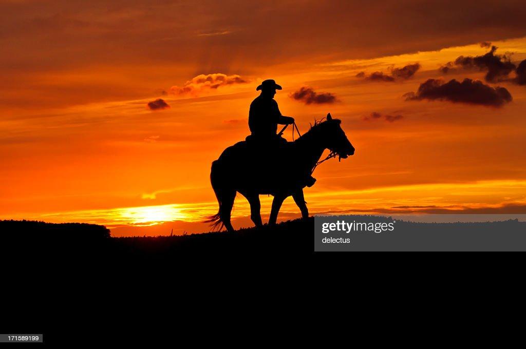 Cowboy con un caballo en la puesta de sol : Foto de stock