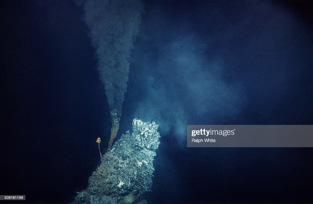 Black Smoker in the Pacific : Stock Photo