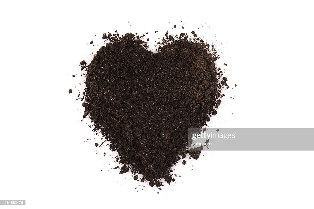 Black soil heart : Stock Photo