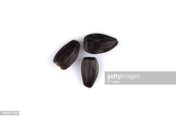 black sunflower seed isolated on a white background - black seed oil stock pictures, royalty-free photos & images