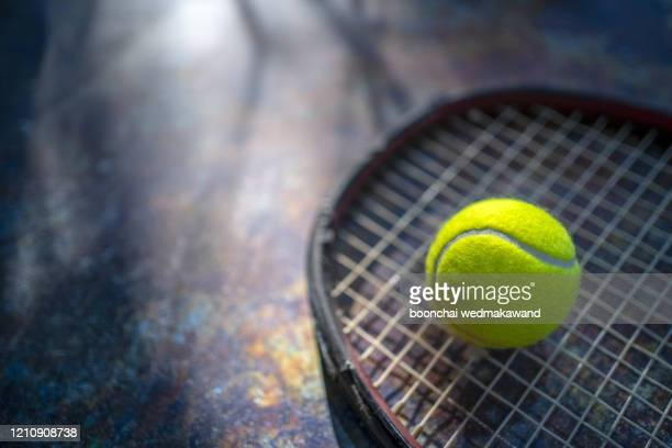 a black tennis racket and green tennis ball at a tennis court in early light. - tennis tournament stock pictures, royalty-free photos & images