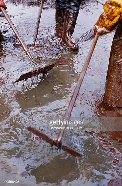 Black Tide In France In 1978 The Amoco Cadiz