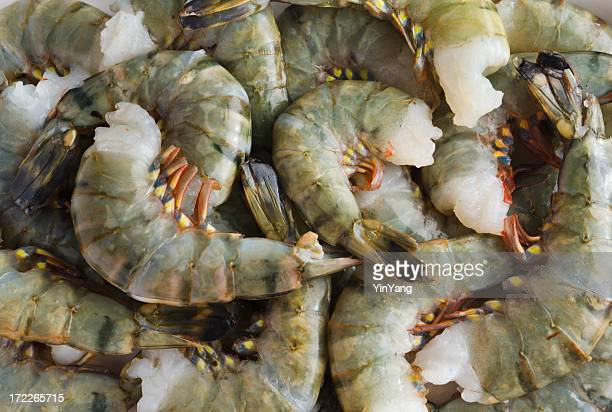 Tiger Prawn Stock Photos and Pictures | Getty Images