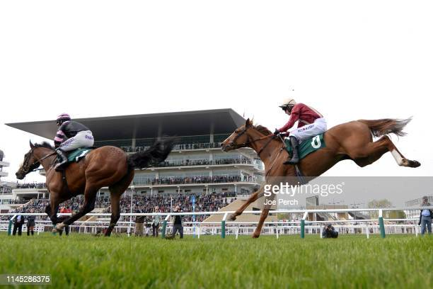 Black Tulip ridden by Tom O'Brien during The EBF/Thoroughbred Breeders' Association Mares' Novices' Handicap Steeple Chase Series Final at Cheltenham...