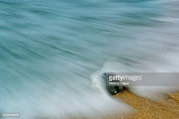 Black Whelk Seashell and Misty Wave Moving on the Shore