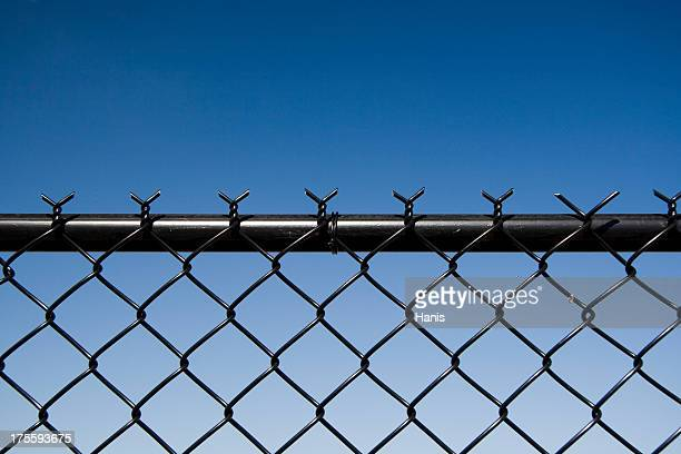 Black wire fence