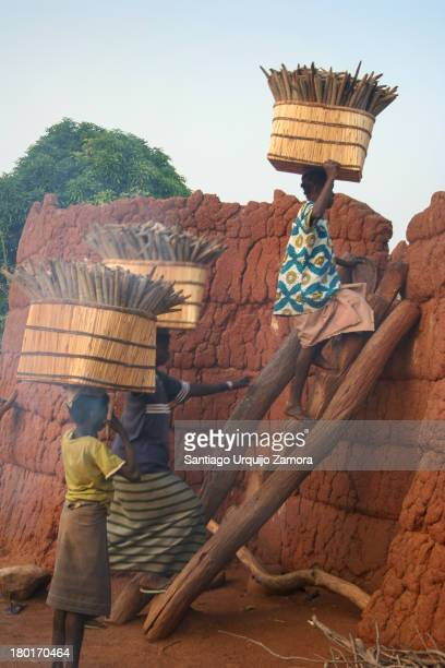 CONTENT] Black women belonging to the Lobi tribe carrying large wicker baskets full of millet on their heads and climbing through a wooden stairs...