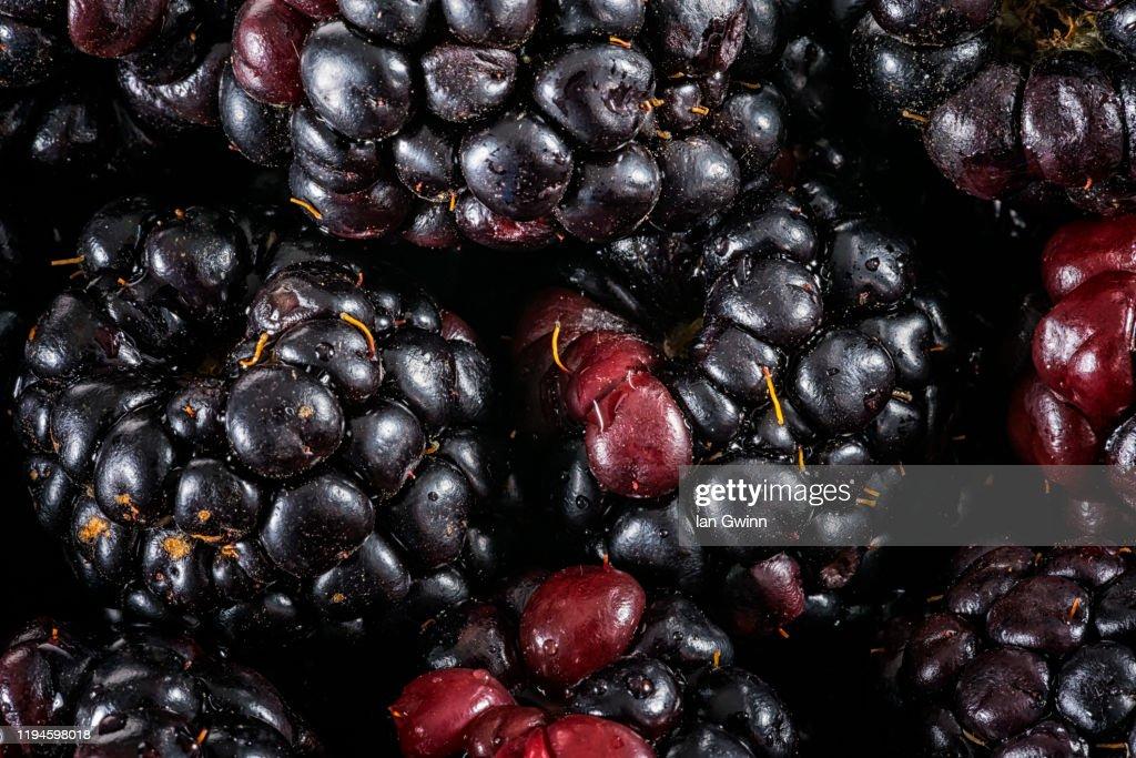 Blackberries Abstract : Stock Photo
