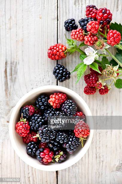 blackberries - blackberry fruit stock pictures, royalty-free photos & images