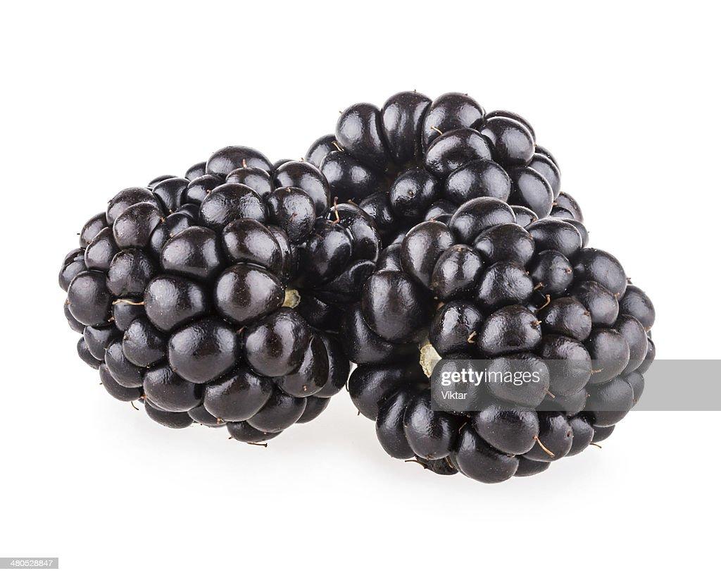 blackberries : Stock Photo