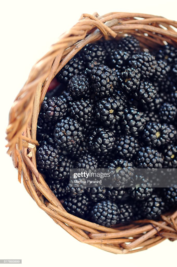 info pour 7cb49 cbce7 Blackberry Basket Stock Photo - Getty Images