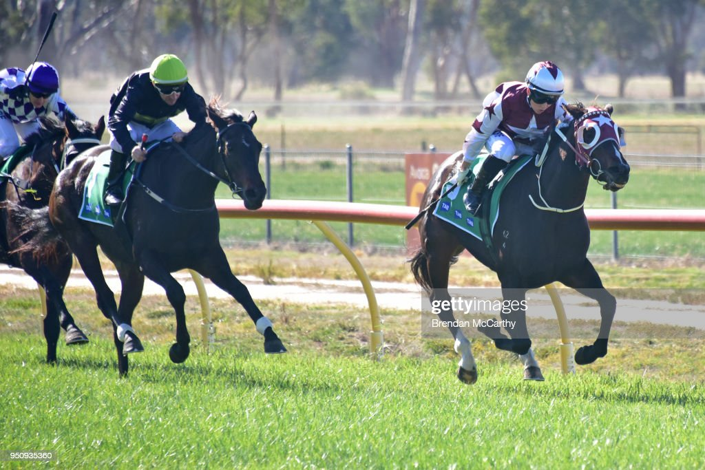 Avoca Shire Turf Club Race Meeting