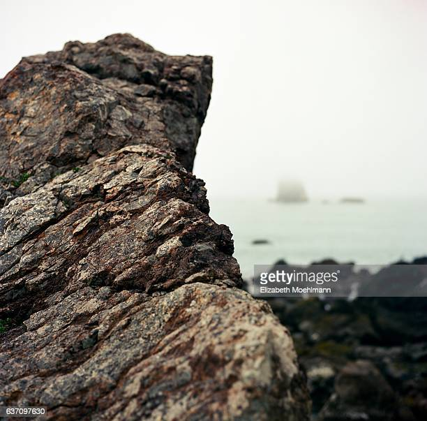 Blacklock Point, Oregon