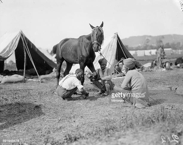 Blacksmith of the 3rd Lahore Indian Division seen here inspecting the companies horses preparing them for the front 30th September 1914