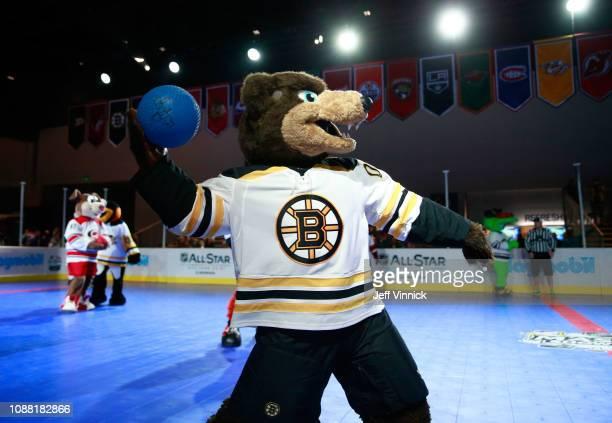 Blades the Bruin of the Boston Bruins participates in the 2019 NHL AllStar Mascot Showdown on January 24 2019 in San Jose California