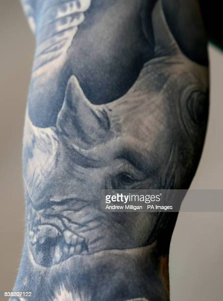 Elephant Tattoos Stockfotos En Beelden