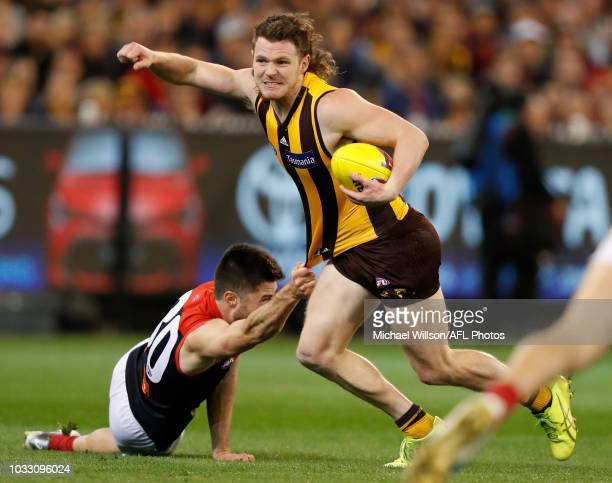 Blake Hardwick of the Hawks and Alex NealBullen of the Demons in action during the 2018 AFL First Semi Final match between the Hawthorn Hawks and the...