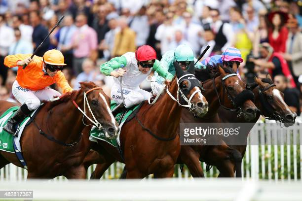 Blake Shinn rides Junoob to win race two The tabcomau Nevilee Sellwood during Golden Slipper Day at Rosehill Gardens on April 5 2014 in Sydney...