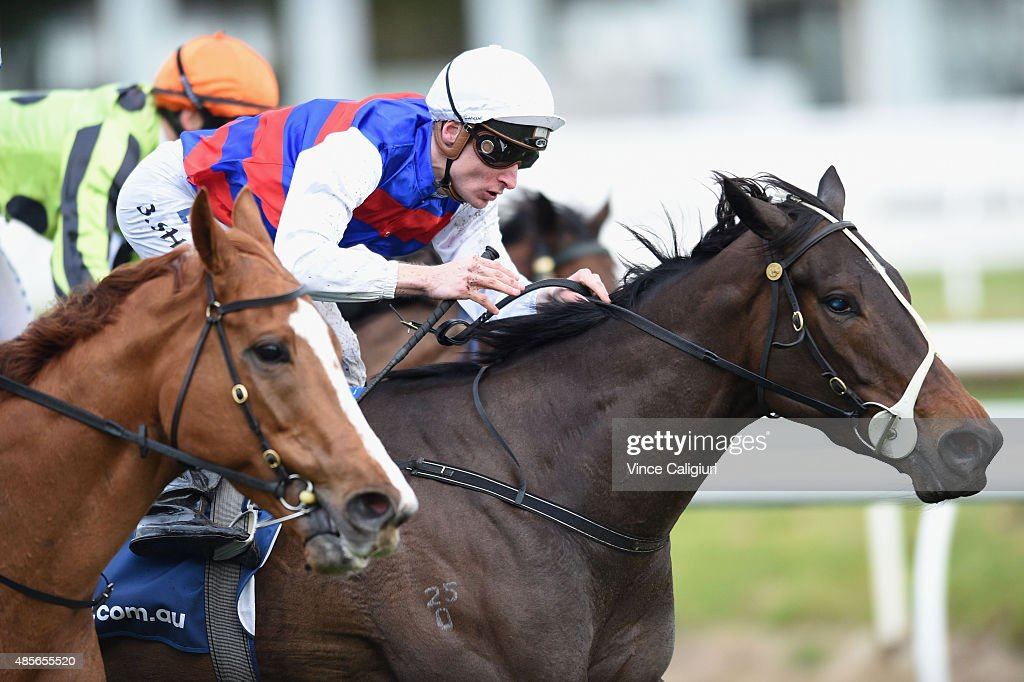 Blake Shinn riding Madam Gangster wins Race 7 during Melbourne racing at Caulfield racecource on August 29, 2015 in Melbourne, Australia.