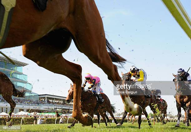 Blake Shinn riding Precedence in Race 6 the Bart Cummings during Turnbull Stakes Day at Flemington Racecourse on October 4 2015 in Melbourne Australia