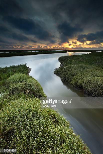 Blakeney salt marshes