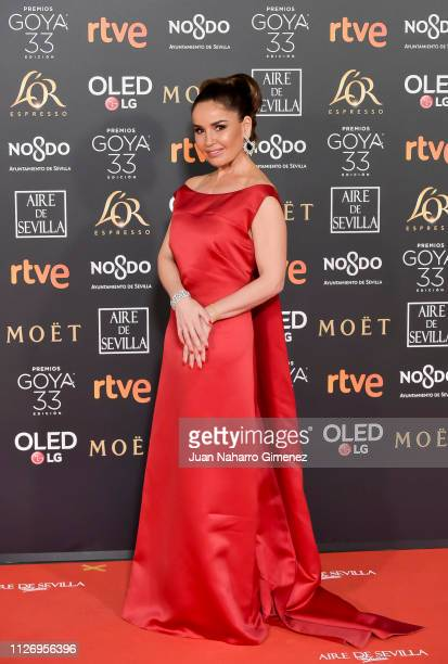 Premios Goya Pictures and Photos - Getty Images