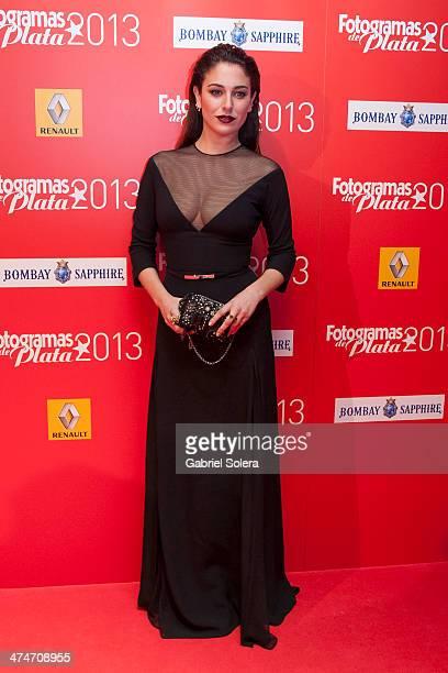 Blanca Suarez attends the 'Fotogramas Awards' 2013 at Joy Slava on February 24 2014 in Madrid Spain
