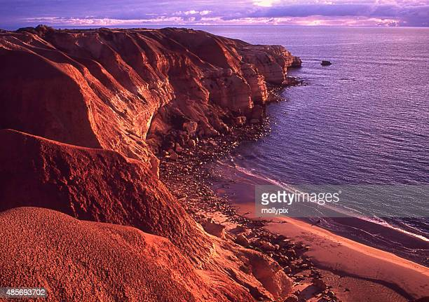 blanche point maslin beach south australia - south australia stock photos and pictures