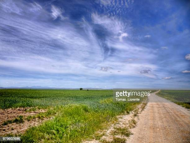 blanco camino - llorente stock pictures, royalty-free photos & images