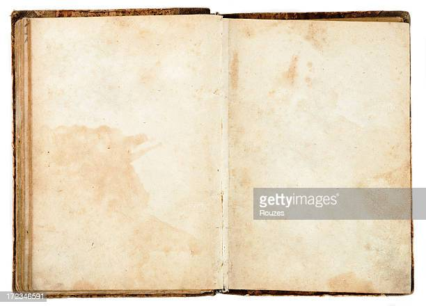 Blank Aged Book