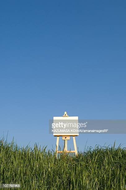 Blank artist's easel in a field with blue sky