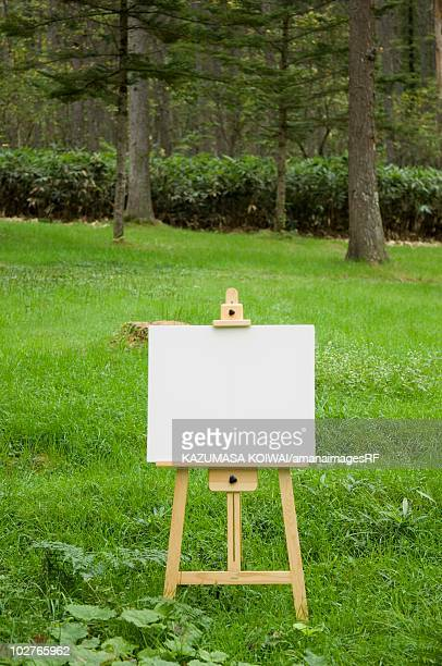 Blank artist's easel in a forest clearing