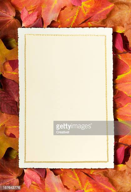 Blank card on fall leaves with copy space